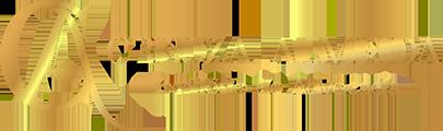 creuza-almeida-advogada-logo-menu