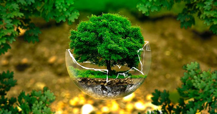 multas ambientais
